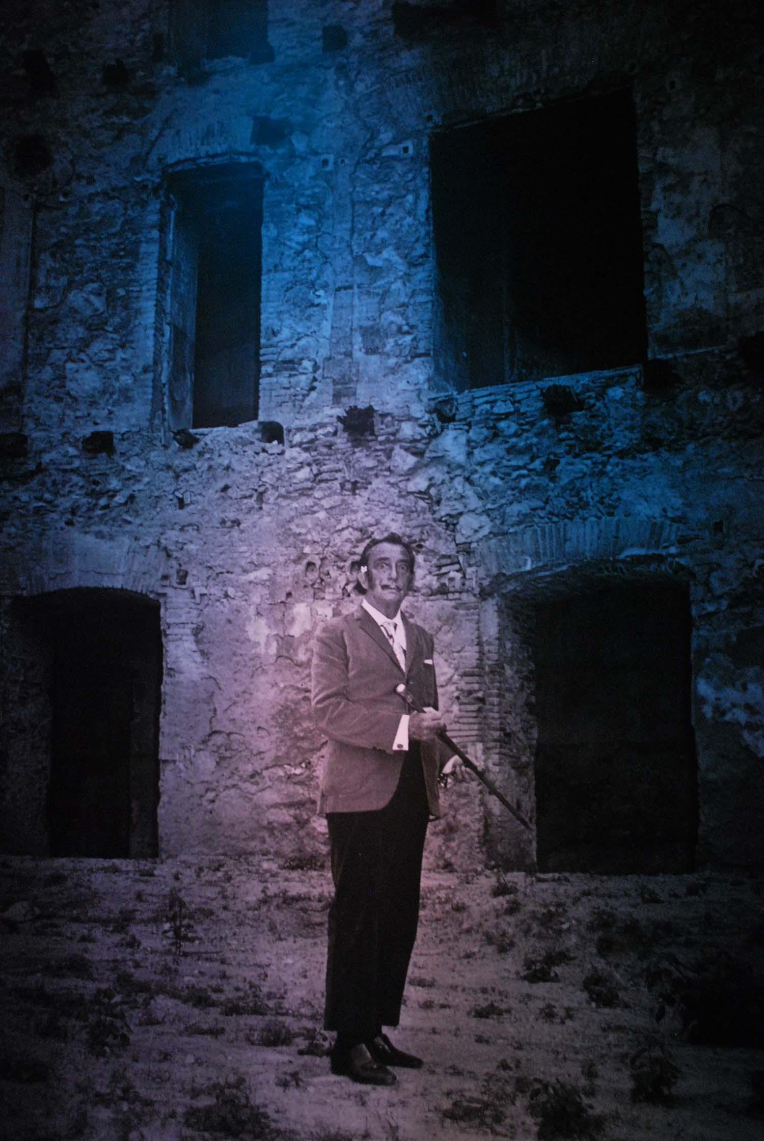 Dali-il-sogno-del-classico-palazzo-blu-pisa-2016